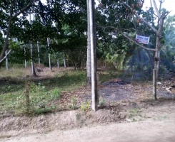Dankotuwa, Puttalam, ,Land,For Sale,1014