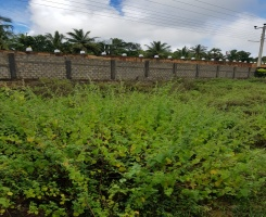 Trincomalee, ,Land,For Sale,1022