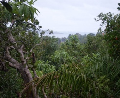 Weligama, Galle, ,Land,For Sale,1026